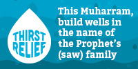This Muharram, build a well in the name of the Prophet's (saw) family